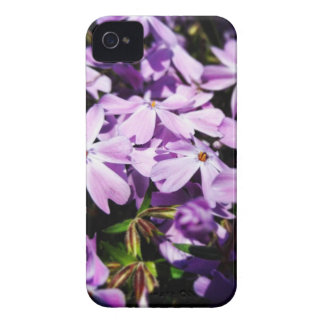 Coque iPhone 4 Case-Mate La correction pourpre de fleur