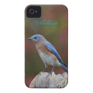 Coque iPhone 4 Case-Mate Oiseau bleu stupéfiant