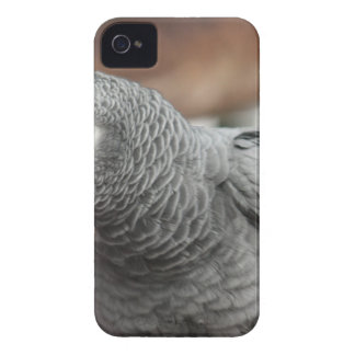 Coque iPhone 4 Case-Mate Perroquet