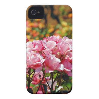 Coque iPhone 4 Copie rose de roseraie de ressort