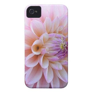 Coque iPhone 4 Dahlia Hued en pastel