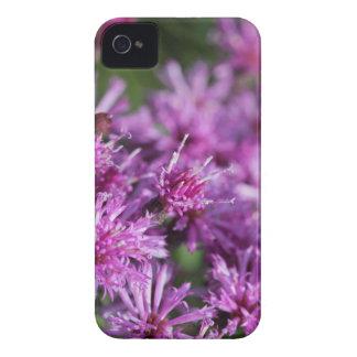 Coque iPhone 4 Fleurs sauvages géants pourpres d'herbe de