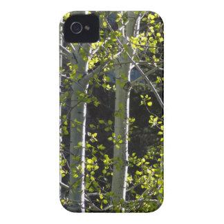 Coque iPhone 4 Jeunes arbres d'Aspen