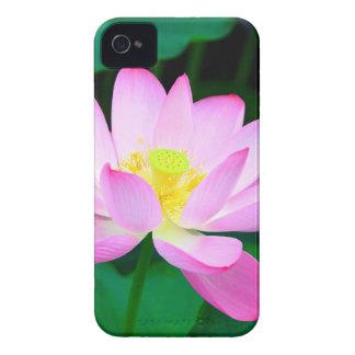 Coque iPhone 4 lotus