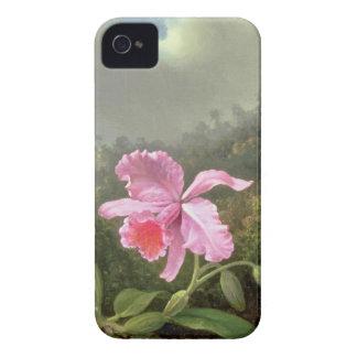 Coque iPhone 4 Orchidée et colibris de Martin Johnson Heade
