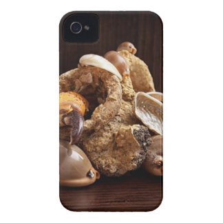 Coque iPhone 4 Restes de mer