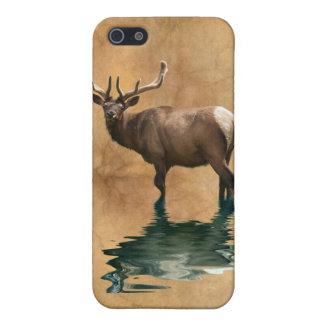 Coque iPhone 5 Art sauvage d'animal de faune d'élans de wapiti