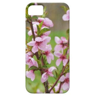Coque iPhone 5 cas de téléphone de fleurs de cerisier