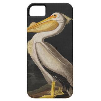 Coque iPhone 5 Case-Mate Copie vintage d'oiseau de pélican blanc d'Audubon