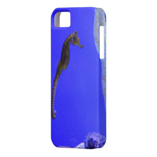 Coque iPhone 5 Case-Mate couverture petit cheval de mer