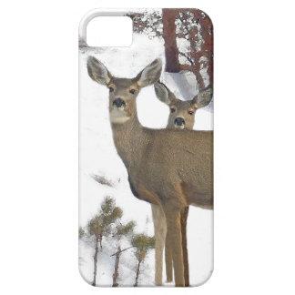 Coque iPhone 5 Case-Mate Faons d'animaux de faune de cerf de Virginie