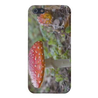 Coque iPhone 5 Champignon d'agaric de mouche