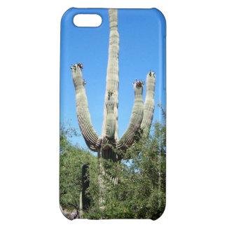 Coque iPhone 5C Cactus du sud-ouest de Saguaro de désert