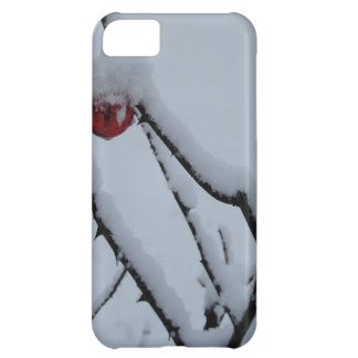 Coque iPhone 5C Ornements de neige et de Noël