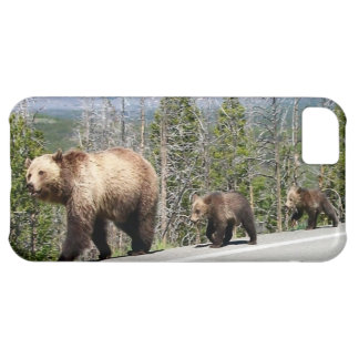 Coque iPhone 5C Ours gris de Yellowstone