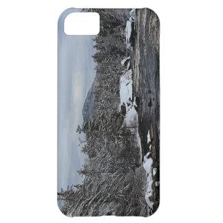 Coque iPhone 5C Rivière d'hiver
