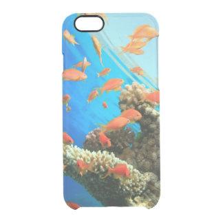 Coque iPhone 6/6S Anthias de Lyretail sur le récif coralien