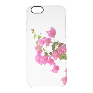Coque iPhone 6/6S collection florale. rose