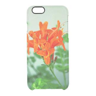 Coque iPhone 6/6S collection naturelle. La Chypre