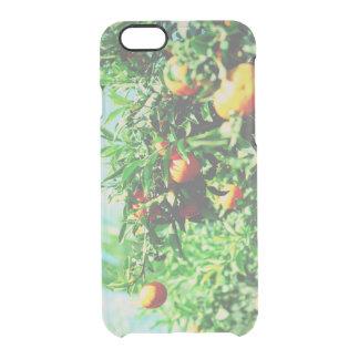 Coque iPhone 6/6S mandarines à la branche. collection de fruit