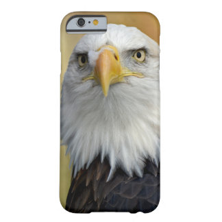 Coque iPhone 6 Barely There Aigle chauve américain
