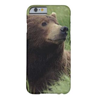 Coque iPhone 6 Barely There Bel ours brun se reposant dans le pré