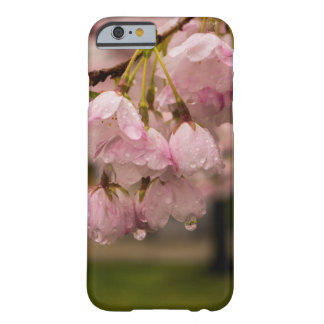 Coque iPhone 6 Barely There Fleurs de ressort