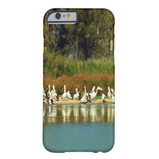 Coque iPhone 6 Barely There Île de pélican, rivière Murray, Australie,