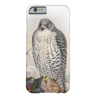 Coque iPhone 6 Barely There Oiseaux adultes de Gould de faucon de l'Islande de