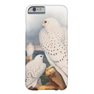 Coque iPhone 6 Barely There Oiseaux légers adultes Grande-Bretagne de faucon