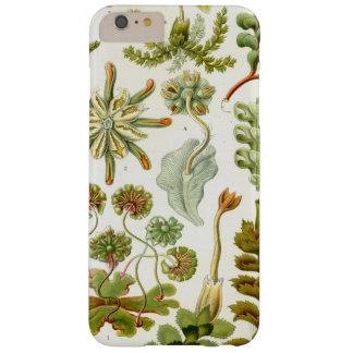 Coque iPhone 6 Plus Barely There Botanique exotique