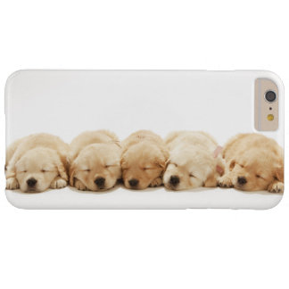Coque iPhone 6 Plus Barely There Les chiots du golden retriever