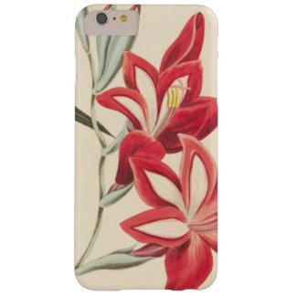 Coque iPhone 6 Plus Barely There Maïs-Drapeau superbe