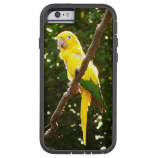 Coque iPhone 6 Tough Xtreme Perroquet jaune