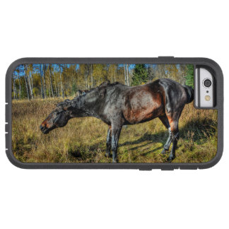 Coque iPhone 6 Tough Xtreme Pur sang noir Percheron secouant outre de l'eau