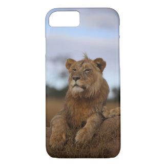 Coque iPhone 7 cas de l'iPhone 8 - lion