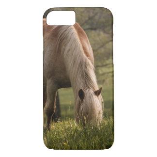 Coque iPhone 7 Chevaux frôlant dans le pré, crique de Cades,