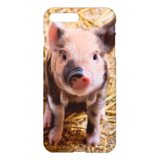 Coque iPhone 7 Plus Bébés mignons d'animaux de ferme de porcelet de