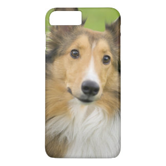 Coque iPhone 7 Plus Colley rugueux, chien, animal