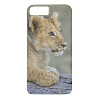 Coque iPhone 7 Plus Petits animaux de lion sur le rondin, Panthera