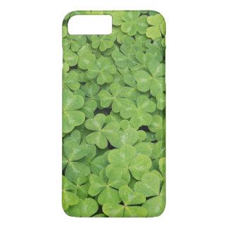 Coque iPhone 7 Plus Vue de feuillage d'oxalide blanche petite oseille