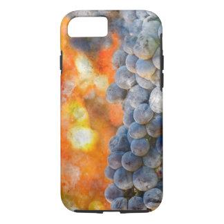 Coque iPhone 7 Raisins de vin rouge sur la vigne