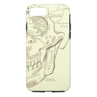 Coque iPhone 7 Région vintage d'Anterolateral d'anatomie du crâne