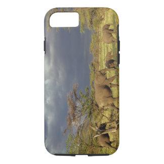 Coque iPhone 7 Troupeau d'éléphant africain, africana de