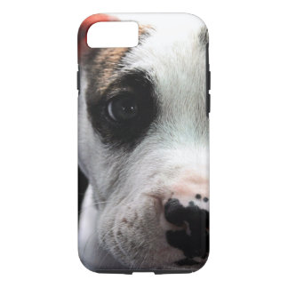 Coque iPhone 8/7 À l'os de pitbull de chiot