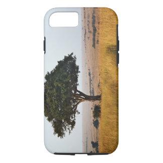 Coque iPhone 8/7 Arbre simple d'acacia sur les plaines herbeuses,