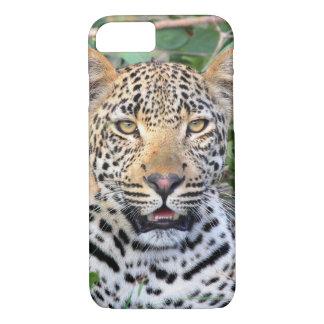 Coque iPhone 8/7 Cas de l'iPhone 7 de tête de léopard à peine là
