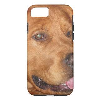 Coque iPhone 8/7 Cas de téléphone de golden retriever