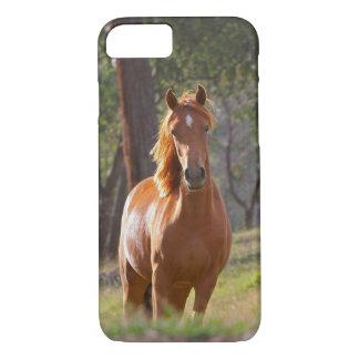 Coque iPhone 8/7 Cheval dans les bois
