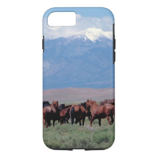 Coque iPhone 8/7 De chevaux cas occidental sauvage de l'iPhone 7